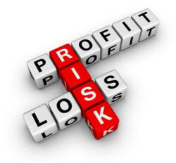 Profit Risk and Loss