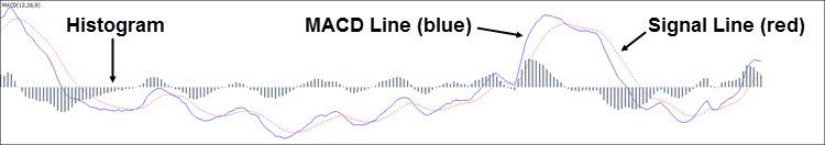 True MACD indicator